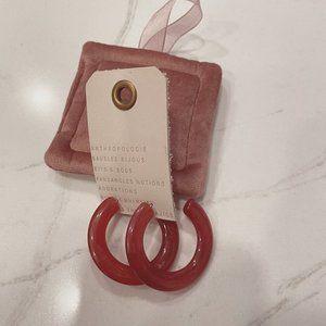 NWT Anthropologie hoop resin earrings